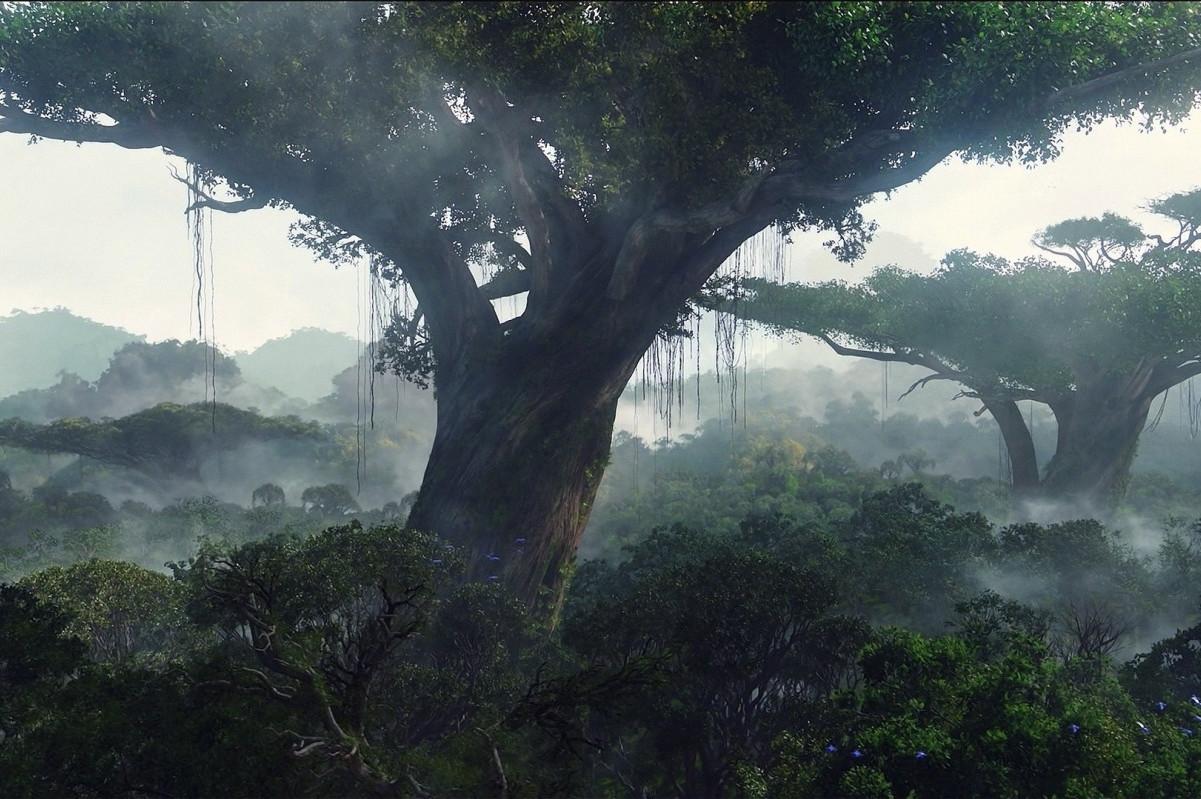 Avatar Heimatbaum