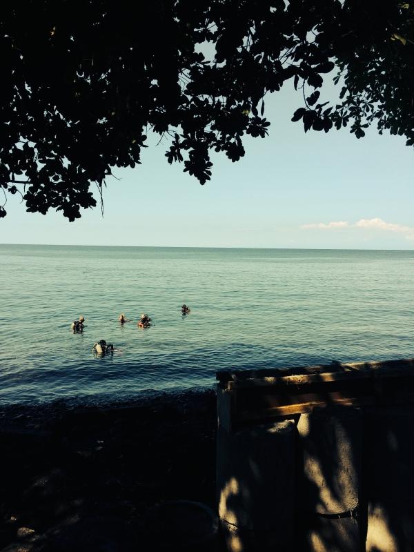 Tauchen auf Bali